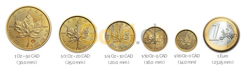 Größenvergleich Maple Leaf Goldmünze mit 1 Euro-Stück