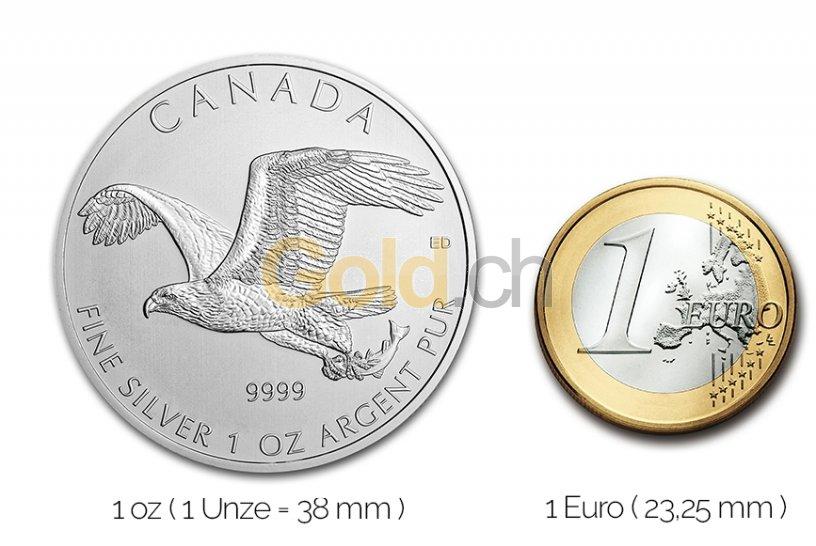 Größenvergleich Birds of Prey Silbermünze mit 1 Euro-Stück